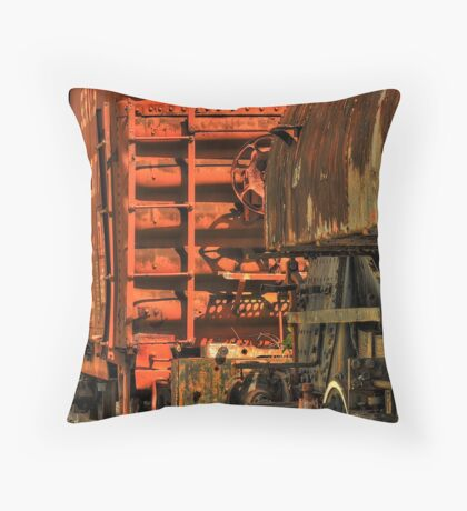 Abandoned... Throw Pillow