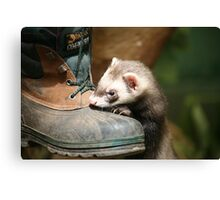If the boot fits Canvas Print