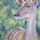 Kudu cow by Fran Webster