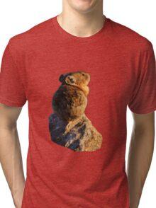 Sunset Pika Tri-blend T-Shirt