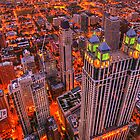 Chicago, View from the 96th Floor by Ted Lansing