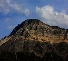 Vimy Mountain, Alberta by Alyce Taylor