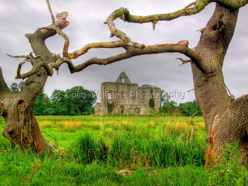 Newark Priory Framed - HDR 2 by Colin  Williams Photography