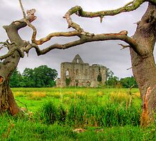 Newark Priory Framed - HDR 2 by Colin J Williams Photography