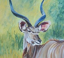 Kudu Bull. by Fran Webster
