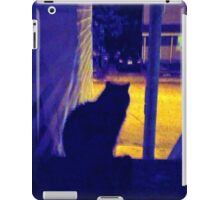 Cat at Night in the Old Neighborhood iPad Case/Skin