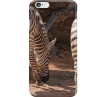 zebra in the forest iPhone Case/Skin