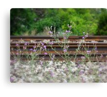Life On Track Canvas Print