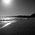 Long Walks on the Beach by Richard Heath