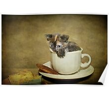 Having a 'Cat'puccino on the way to 'Cat'mando  Poster