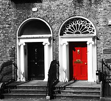 Dublin Doors by Chloe Garfield
