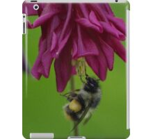 Bumble Bee With Massive Pollen Sacks On A Columbine iPad Case/Skin