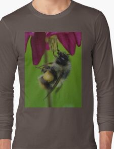 Bumble Bee With Massive Pollen Sacks On A Columbine Long Sleeve T-Shirt