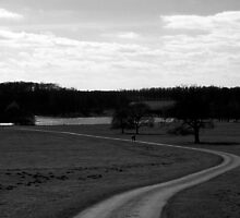 Long and Winding Road by SquarePeg