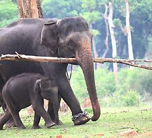 Safe With Mom! by Indrani Ghose