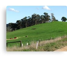 Country Hillside Canvas Print