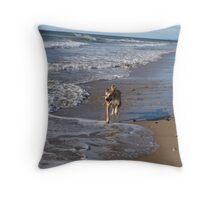 Beach @ the Beach Throw Pillow