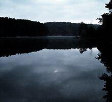 Dark Reflection by Timothy Eric Hites