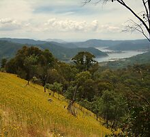 Lake Eildon by Joe Mortelliti
