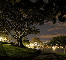 Park at night by Gino Iori