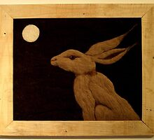 Lunar Hare by ImageInNation
