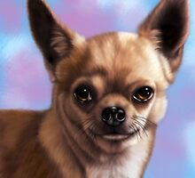 Chihuahua by Lucy Marsella