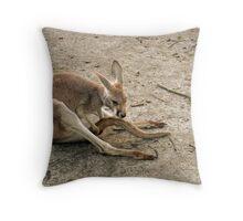 Little Joey Throw Pillow