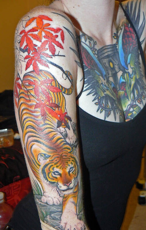 Tiger Colour by KittyElixir
