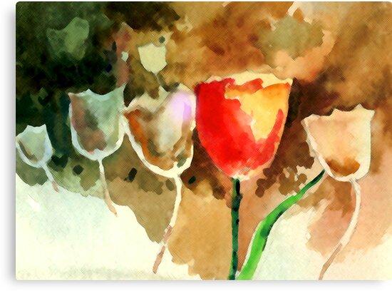 Tulips1 by Anil Nene