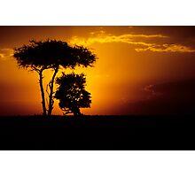 Mara sunset Photographic Print