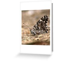 Biggleswade Butterfly Greeting Card