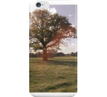 Picturesque Counrtyside Landscape iPhone Case/Skin