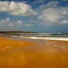 Cape Woolamai Beach by Aleksander