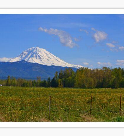 Mount Rainier Splendor Sticker