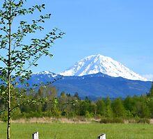 Mount Rainier Grandeur by Leona Bessey