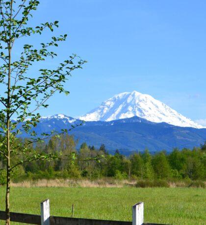 Mount Rainier Grandeur Sticker