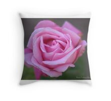 Sweet and delicate rose Throw Pillow