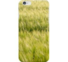Green Barley Field Closeup iPhone Case/Skin