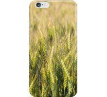 Green Wheat Closeup iPhone Case/Skin