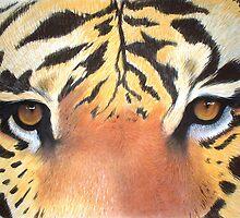 Tigers Eyes by Cherie Roe Dirksen