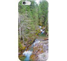 Colorful Mountain Stream  iPhone Case/Skin