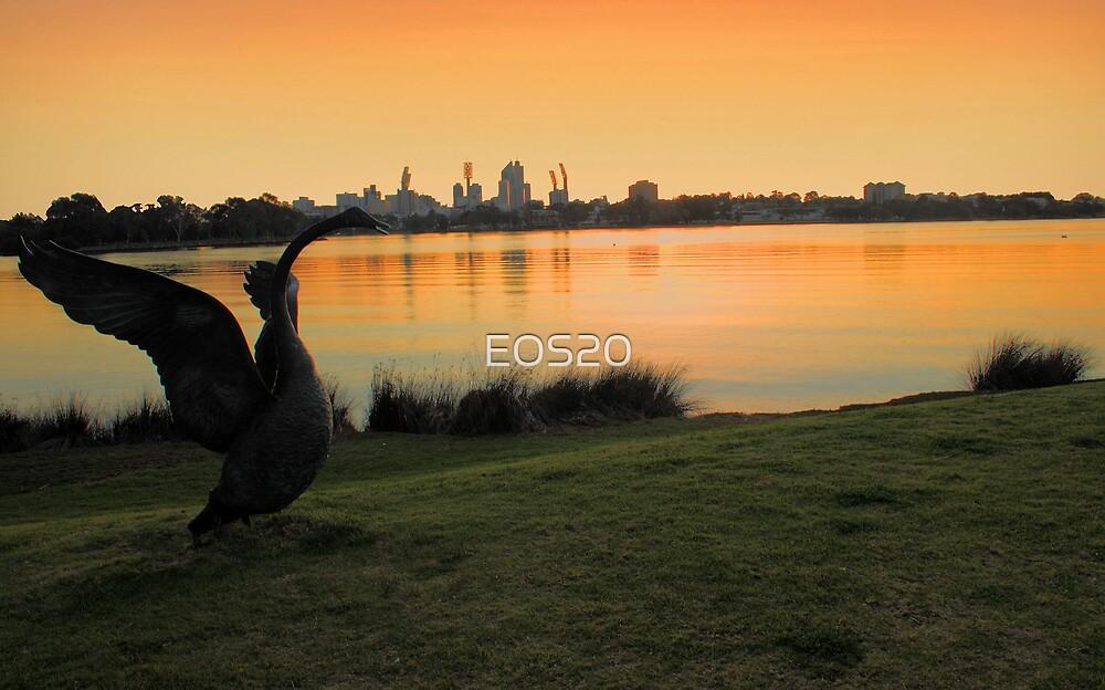 Swan River - Perth Western Australia   by EOS20