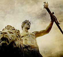 Victory by jotography