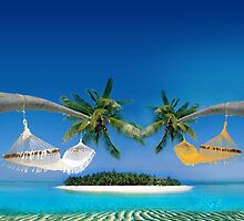 Beach hammocks  by Digital Editor .