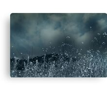 Blue For No Reason Canvas Print