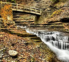 Stoney Brook (HDR) by Jeff Palm Photography