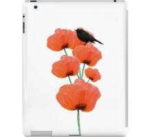 Vintage cute black bird orange poppy flowers iPad Case/Skin