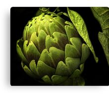 Awesome Artichoke Canvas Print