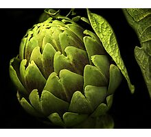 Awesome Artichoke Photographic Print
