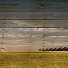 Barn wood by Marlene Hielema